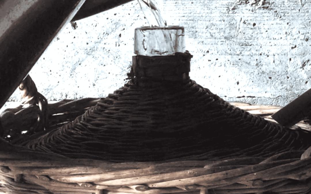 Kirschproduktion
